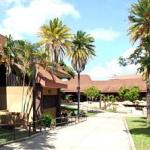 ハワイの「カピオラニ・コミュニティ・カレッジ」が奨学金