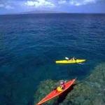 マウイ島のD.T.フレミング・ビーチ・パークが全米No.1
